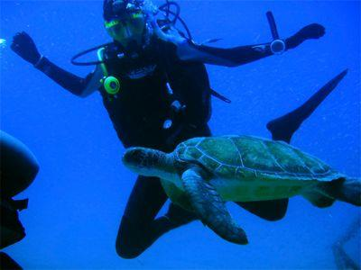 Sailing Greek islands - Greece charter sailing holidays - Scuba Diving - Girl Diver with Turtle